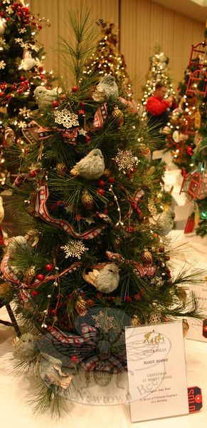 "Having found support in the past while dealing with three types of cancer, Newtown resident and survivor Any Dent now shares her talent with Ann's Place. ""Christmas at Mount Lodge"" was one of at least four trees Ms Dent designed for last weekend's Festival of Trees."