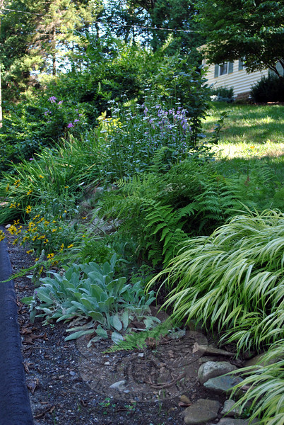 A sweep of plants borders the road at Barbara O'Connor's home. (Crevier photo)