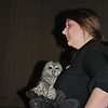 Emrys is a great barred owl, explains handler Brenda Lyons, a type of owl that can be found commonly in Connecticut woods. Emrys lost a wing in an accident and is a permanent resident of Horizon Wings.  (Crevier photo)