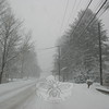 Travel was in near whiteout conditions during the second snow storm of the season on Friday, January 7. This was the view along Washington Avenue around 4 o'clock that afternoon.  (Hicks photo)