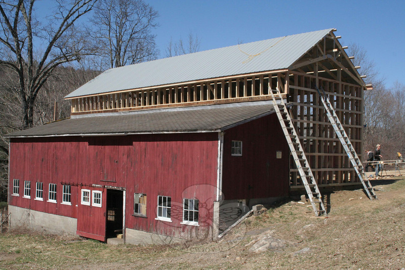 A view from the southwest on day two of the Staudinger barn reconstruction.  (Hicks photo)