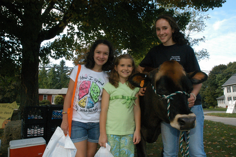 Sarah Hull of Newtown, right, is a student in Nonnewaug High School's agricultural production program. Sarah was handling Annie, the Jersey cow who lives at Castle Hill Farm on Sugar Lane. Standing nearby are Jaclyn O'Leary and Ashley Solomon.  (Gorosko photo)