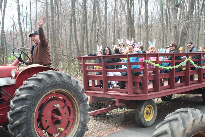 Rob Emmerthal drove one of three antique Farmall tractors that offered hayrides through a portion of Fairfield Hills on April 22. Mr Emmerthal and his family were participating in Bunny Watch Hayrides, a fundraiser for an Odyssey of the Mind team from Newtown Middle School that has qualified for the national level of competition in May.  (Hicks photo)  **NOTE: For more photos from the Bunny Watch Hayride event, please see the separate gallery set up which includes all of the photos used in the slideshow that was posted online with the story about this event.