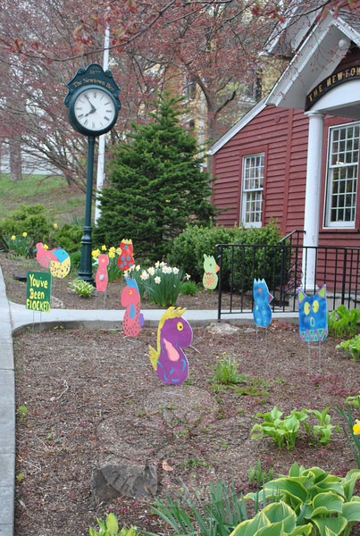 "Another view of the birds that ""flocked"" The Newtown Bee front garden on Wednesday, April 27. The 24-hour visit by the cardboard birds was part of a fundraising effort by and for a Newtown Middle School Odyssey of the Mind team.  (Crevier photo)"
