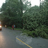 A Newtown Hook & Ladder firefighter was on standby at the intersection of Parmalee Hill Road and Windy Woods Circle on the evening of June 9, where a large tree had fallen during a severe thunderstorm, blocking access to Windy Woods Circle.  (Gorosko photo)