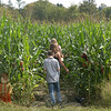 Some children make their way into an elaborate corn maze. (Gorosko photo)