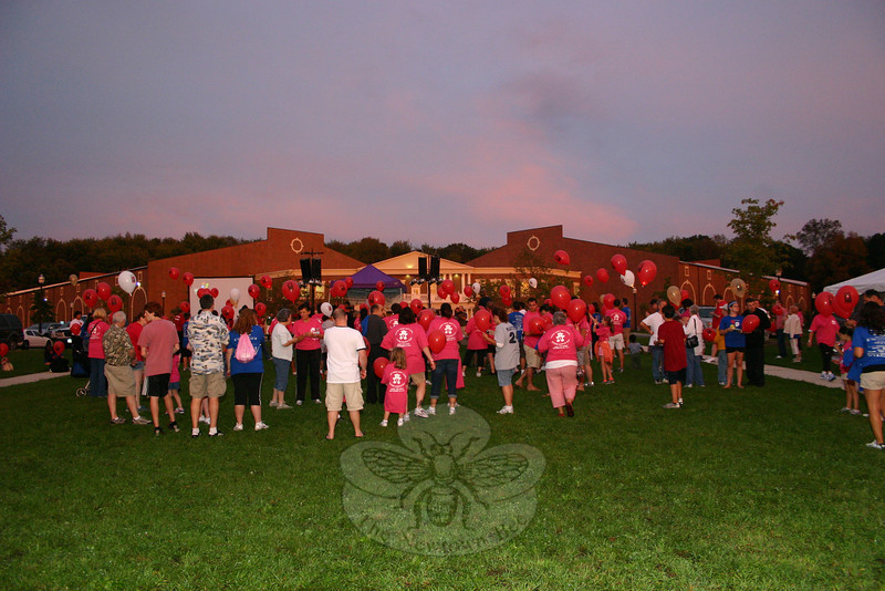 Hundreds of people from across Fairfield County converged on the lawn area in front of Newtown Youth Academy for the third Newtown-based Light The Night Walk last weekend. A gorgeous sunset was an unexpected highlight of the event.  (Hicks photo)