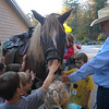Children at the Children's Adventure Center for a ribbon cutting and dedication ceremony, gathered around Glen Morris, right, and his registered Morgan horse Ollie Hawk.  (Hallabeck photo)