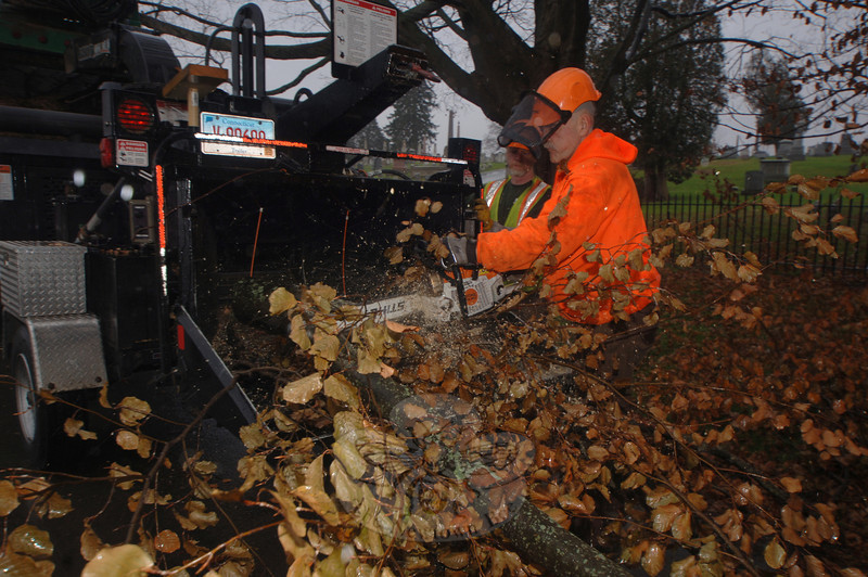 Paul Hubina cuts limbs with a chainsaw as the wood goes into the chipper.  (Bobowick photo)