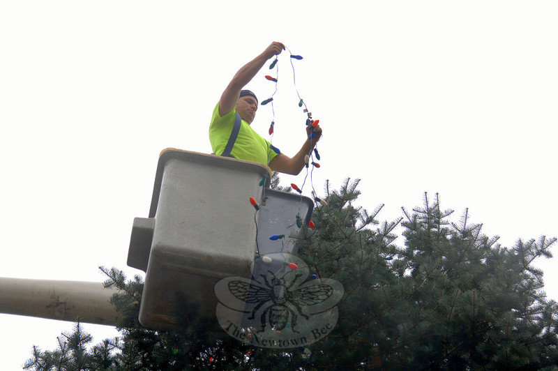 Public Works employee Keven Belden untangles Christmas lights Tuesday as he decorates the tree on the corner of Church Hill Road and Washington Avenue.  (Bobowick photo)