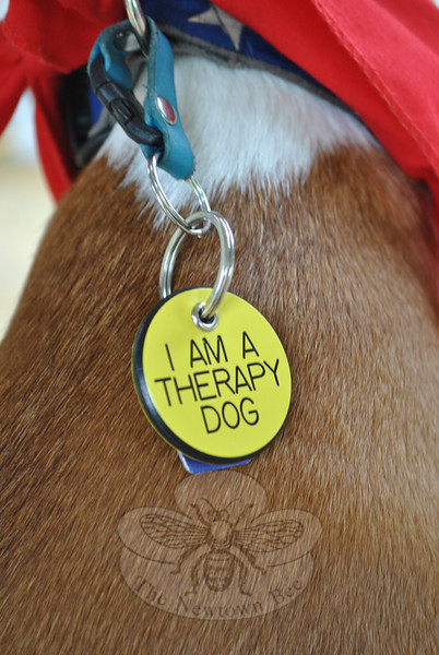 Pets certified by Therapy Dog International are issued a scarf and a tag, both of which are to be worn whenever visiting.  (Crevier photo)