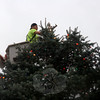 Public Works employee Keven Belden arranges the star atop the tree in Sandy Hook Center.  (Bobowick photo)