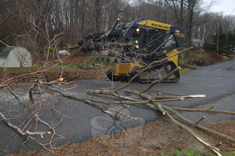 Using a skid steer, which is more maneuverable and lighter than a backhoe, town crews continued to remove debris from the October Nor'easter this week.  (bobowick photo)
