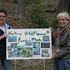 Members of The Town & Country Garden Club of Newtown — including Barbara O'Connor, left, and Margareta Kotch — are preparing the 5th Annual Natural Walks, which will return to Orchard Hill Nature Center on Sunday, May 6. From 2 to 4 pm the public is invited to meander along the trails of the nature center on Huntingtown Road, the entrance of which is approximately a quarter of a mile south of Huntingtown's intersection with Orchard Hill Road. Numerous temporary signs and markers will have been placed along the trails to identify numerous varieties of ferns, wildflowers, invasives and indigenous trees that can be found within the property. Wooded pathways and boardwalks made the tour safe and comfortable for walking so that the experience of discovering different plants and their habitats can be safely enjoyed along the way. New this year will be a pair of guided tours led by members of the garden club. The tours will begin at 2 and 3:30 and will include a history of the dam and waterfall in the preserve, as well as the general geology of the area. All ages are welcome.   (Hicks photo)