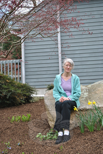 Sitting on a large rock in the garden near her front walk, Dr Marjorie Cramer is framed by fledgling leaves of a Japanese maple, a boxwood, daffodils, and sprouts pushing through the mulch that promise color later in the spring.   (Crevier photo)