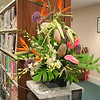 "Bonnie Johnson used Monstera Leaves, Soloman's Seal, Dendrobium orchids, Birds of Para-dise, flax leaves, allium and Antherium for this entry in the Design Division, Section A (Bali Hai), Class 2 (Younger Than Springtime). She received a blue ribbon for this effort.<br /> <br /> PLEASE NOTE: The full collection of photos that made up the slideshow that accompanied this story online can be found in a separate gallery, here:<br />  <a href=""http://newtownbee.smugmug.com/Journalism/Special-Events/Garden-Club-of-Newtown-South/23295542_NCx486#!i=1879881239&k=FzbHfDW"">http://newtownbee.smugmug.com/Journalism/Special-Events/Garden-Club-of-Newtown-South/23295542_NCx486#!i=1879881239&k=FzbHfDW</a>"