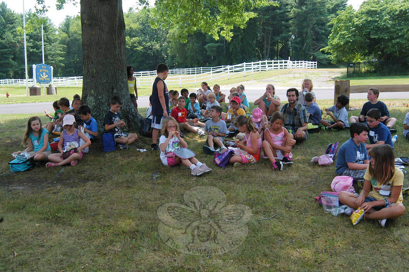 Students in Education Connection's Tails to Tales program went on an outing to The Second Company Governor's Horse Guard's grounds on Wednesday, July 17.  (Hallabeck photo)