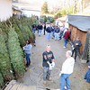 Lining the yard with a variety of trees between six feet to more than nine feet tall, co-coordinator Michael Burton pulled on thick gloves and helped with the moving. In roughly an hour, the hardworking volunteers had emptied the truck bed. At left, placing tags on trees, is Mr Burton's daughter Kelly, who co-chairs the annual fundraiser with him. For sale starting at $40, the trees, along with wreaths, kissing balls, and cemetery boxes, will raise funds for the fire company.  (Bobowick photos)
