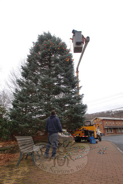 Town crew members Jeff Thomas, on the ground, and Keven Belden, wrapping strands of bulbs through evergreen limbs, dressed up Sandy Hook Center's tree with strands of lights on Wednesday.  (Bobowick photo)