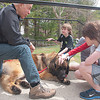 Vic Neumann, left, of Therapy Dogs International, and his dog, a 145-pound Leonberger named Vikahn, received and offered attention from children at C.H. Booth Library on Thursday, April 18.   (Dietter photo)