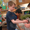 Middle Gate third grade student Owen Reinhart received his blue spruce sapling on Friday, April 26.  (Hallabeck photo)