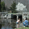 A parent and child did some nature study at a Sunday, April 28, Family Fun Day free educational program held at Sticks and Stones Farm on Huntingtown Road. The nature-oriented event at the 60-acre farm was intended for children ages 5 through 16 and their parents.   (Gorosko photo)