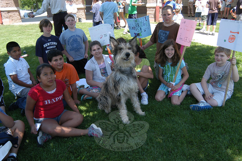 """Students gather with Chester, a Berger Picard owned by Christina and Taylor Potter, dur-ing a """"Meet the Breed"""" event at Reed Intermediate School on Thursday, May 31.   —Bee Photo, Hallabeck"""