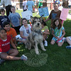 "Students gather with Chester, a Berger Picard owned by Christina and Taylor Potter, dur-ing a ""Meet the Breed"" event at Reed Intermediate School on Thursday, May 31.   —Bee Photo, Hallabeck"