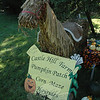A sign next to a horse fashioned of dried vegetation advertised autumnal activities held at the nearby Castle Hill Farm on Sugar Lane.  (Gorosko photo)