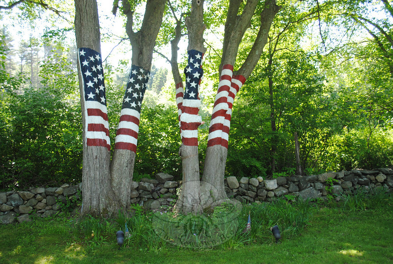 While whimsical garden ornaments add personality to the many gardens on Howard Lasher's property, this grove of maple trees painted by artist David Merrill stands as a solemn memorial to friends and colleagues who perished in the 9/11 attack on the World Trade Center.  (Crevier photo)