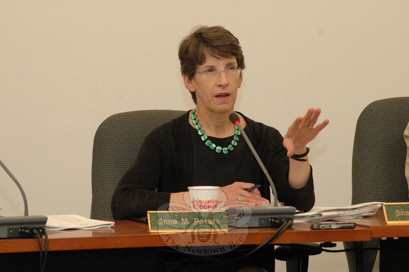 Anne Peters, chairman of the Inland Wetlands Commission (IWC), makes a point at a June 23 IWC public hearing on the Housatonic Railroad Company's application for a wetlands protection permit for its Hawleyville property.  (Gorosko photo)