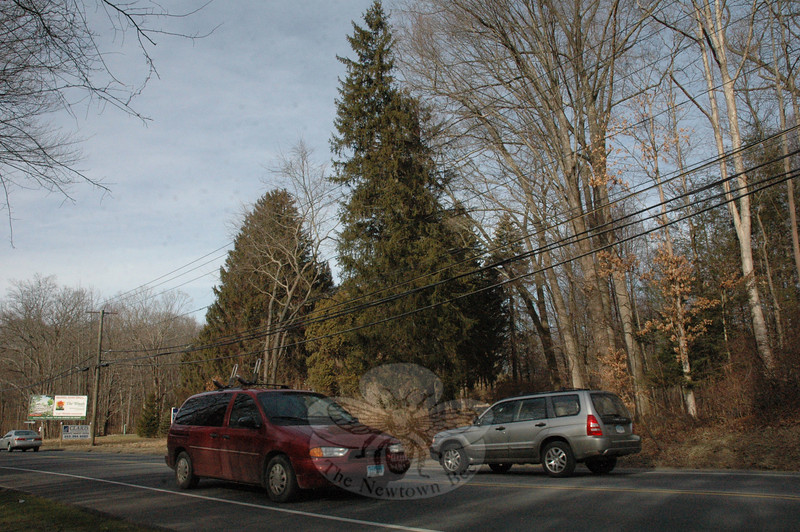 A view of the wooded 164 Mt Pleasant Road (Route 6) site where a development firm is proposing the construction of a veterinary hospital.  (Gorosko photo)