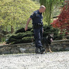 A state police officer handling a police dog walks across the driveway at 89 Poverty Hollow Road, where a police homicide investigation into the death of Elizabeth Gough Heath was underway.  (Gorosko photo)
