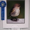 "Photography by members the Flagpole Photographers Camera Club went on view in the C.H. Booth Meeting Room on Saturday, April 10, and will be display for the public through the remainder of the month. Photographs include the People's Choice photo, ""I've Got My Eye On You,"" by Rhonda Cullens.  (Hallabeck photo)"