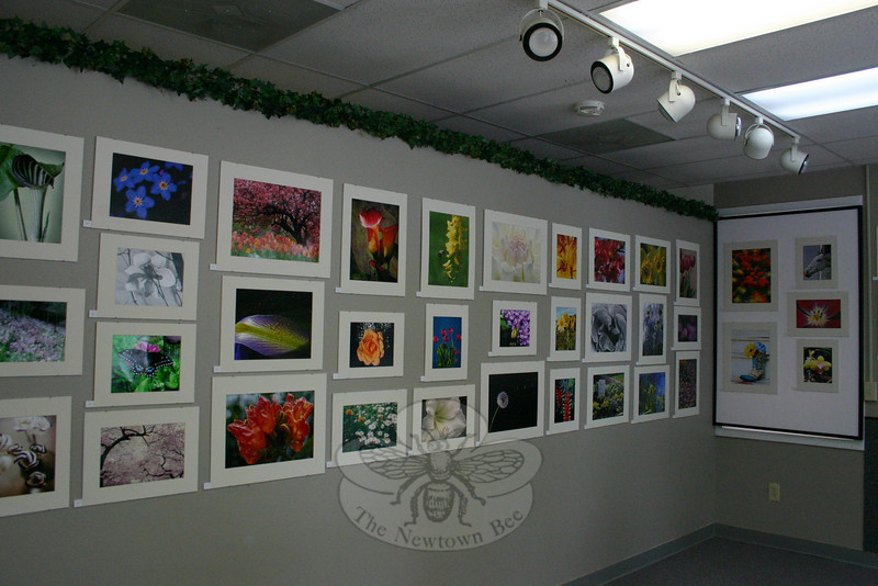"Five walls at Koenig FrameWorks have been covered with more than 100 photographic images, the result of a call for submissions for the gallery's spring show. ""Blooms"" will have its opening reception on Friday, April 30, from 6 to 9 pm, and will remain on view until May 29.  (Hicks photo)"