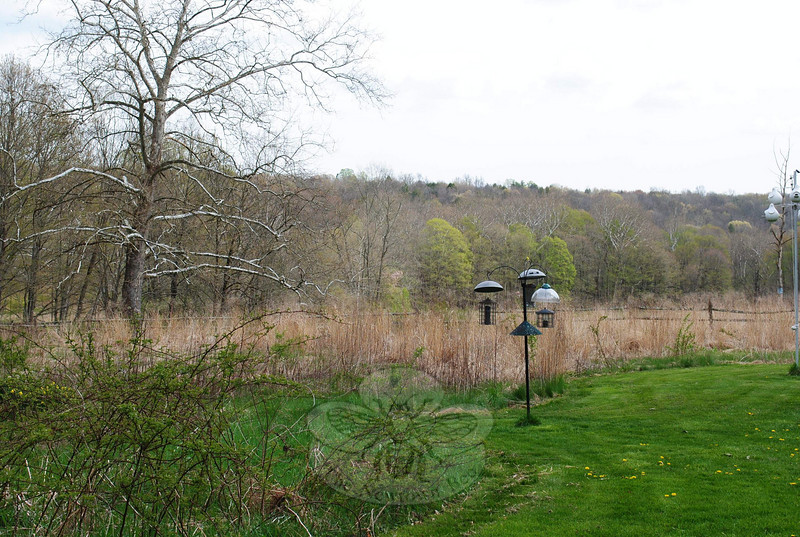 Bent of the River Audubon Center in Southbury is just a few miles away from Newtown.  (Crevier photo)