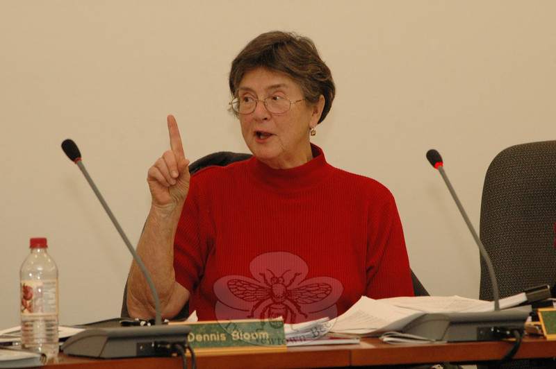 Planning and Zoning Commission Chairman Lilla Dean discusses the P&Z's upcoming revision of the 2004 Town Plan of Conservation and Development. At a February 4 session, Ms Dean assigned P&Z members various planning subject areas for review.  (Gorosko photo)