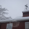 The bee weathervane atop the Newtown Bee building catches snow in its wings.  (Bobowick photo)