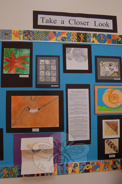 """Students across the school district were asked to """"Take a Closer Look"""" for a collaborative art project that is now hanging in the schools after Sandy Hook School art teacher Leslie Gunn visited Santa Fe, N.M., last summer. This is part of the selection of work on view at Reed Intermediate School.  (Hallabeck photo)"""