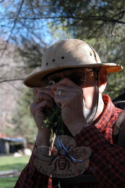 Steve Brill uses a tiny magnifying glass to examine a specimen of hairy bittercress.  (Crevier photo)