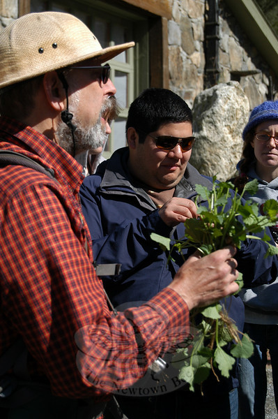 A plant that grows rampantly in yards and woods, garlic mustard is a great source of iron and vitamin A, Steve Brill says. Ryan Delgado samples the green as Hannah Kligman looks on.  (Crevier photo)