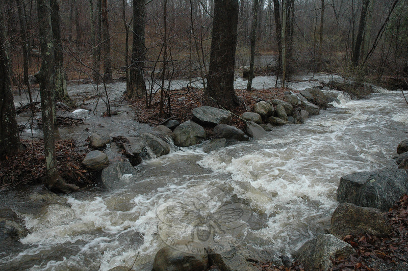 A tributary stream of the Halfway River at Jordan Hill Road.  (Gorosko photo)