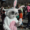 The Easter Bunny was a special guest during Parks & Rec's annual Spring Egg Hunt at Dickinson Park last weekend.  (Gorosko photo)