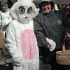 In a special appearance, the Easter Bunny, accompanied by Parks & Rec Assistant Director-Recreation RoseAnn Reggiano, gets ready to start the town's Spring Egg Hunt for small children at Dickinson Park on Saturday, March 27.  (Gorosko photo)