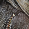 Hackle feathers, 10 to 12 inches long, are secured to hair by a tiny bead set close to the scalp. The natural feathers can remain in hair for several weeks to months, and can be washed, dried, or curled like hair. The flexibility, quality, and beautiful colors of the special rooster feathers that make them desirable for fly tying also make them ideal for fashion, creating a rift between some fishermen, feather growers, and the fashion industry.  (Crevier photo)
