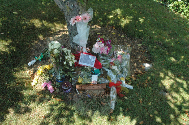 Friends of the late Danielle Jacobsen, 17, of Newtown have created a flower-strewn memorial to the Newtown High School senior beneath a tree next to the small pond at Northbrook Condominiums in Monroe where her body was found on the morning of Sunday, May 30.  (Gorosko photo)