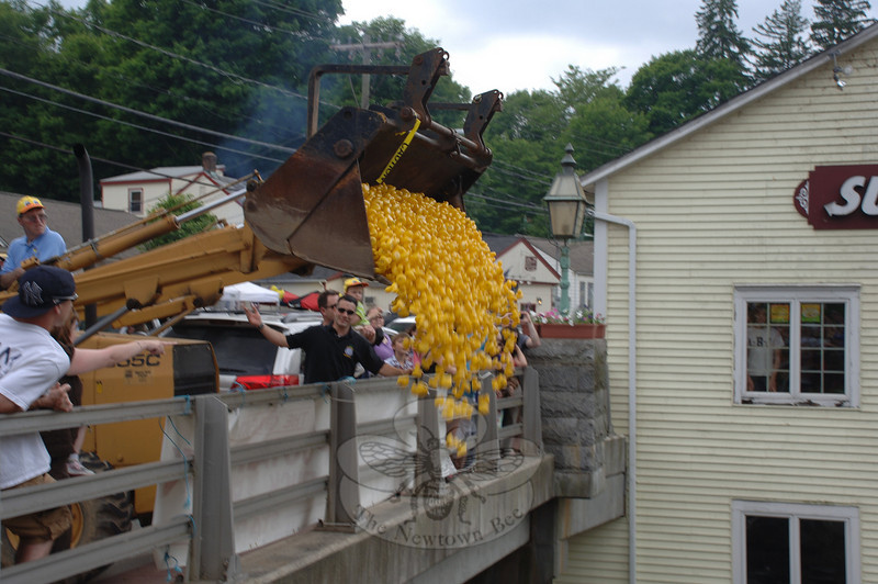 Ducks Overboard! Michael Porco, Jr, waves to the backhoe driver, urging him to empty the bucket of ducks off the Sandy Hook Center bridge and onto the Pootatuck River during one of the key moments of the 10th Annual Great Pootatuck Duck Race on Saturday, May 29.  (Bobowick photo)