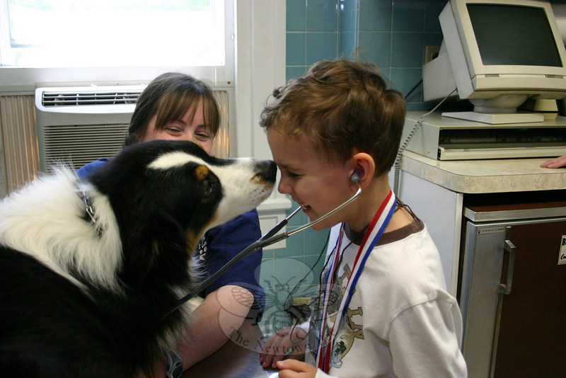 Travis, an Australian sheep dog, was very friendly to all the children who visited him from Newtown Congregational Cooperative Nursery School on May 14. He snuck sniffs and kisses in whenever he could.  (Hicks photo)