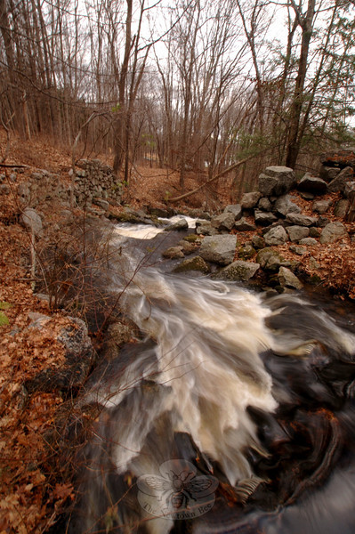 A stream rushes through the Orchard Hill Nature Center, offering one example of Newtown's preserved open space and natural habitat.  (Bobowick photo)