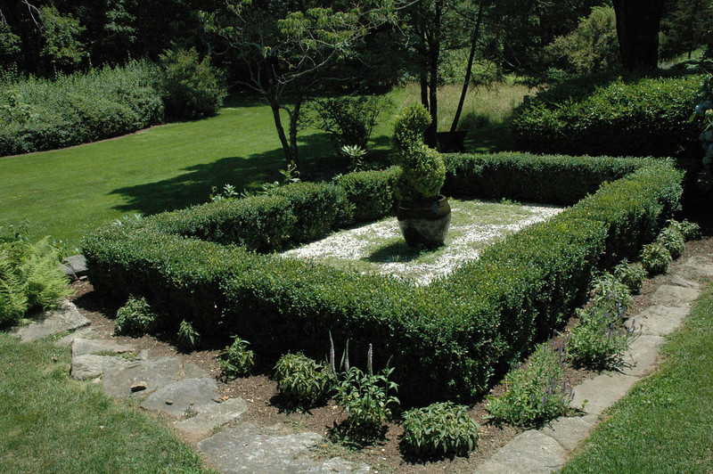 A rectilinear hedge surrounds an example of topiary at the 95 Boggs Hill Road property.  (Gorosko photo)